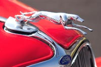 Ford - Classic Car and Automobile Mascots