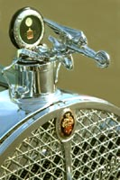 Packard Classic Car and Automobile Mascots