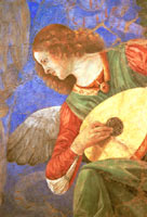 Melozzo's Brunette Angel Playing the Lute - Vatican Rome Italy